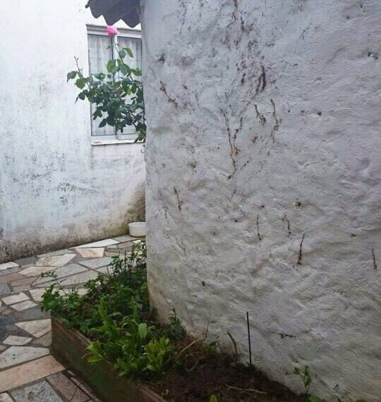 alquiler-piso-peñafiel-ca17-06